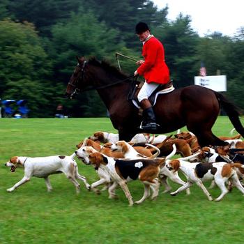 Для охоты необходимо содержать конюшню с отменными лошадьми, псарный двор и многочисленный штат работников.