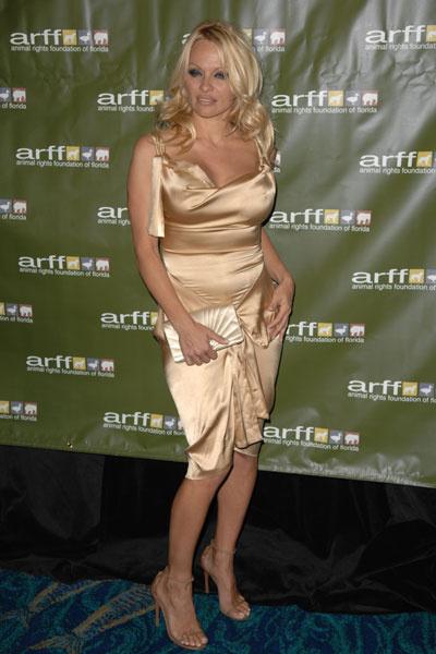 Памела Андерсон, 2009 год