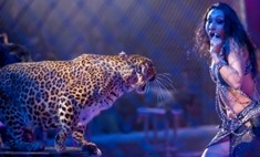 Цирк Гии Эрадзе: секреты закулисья