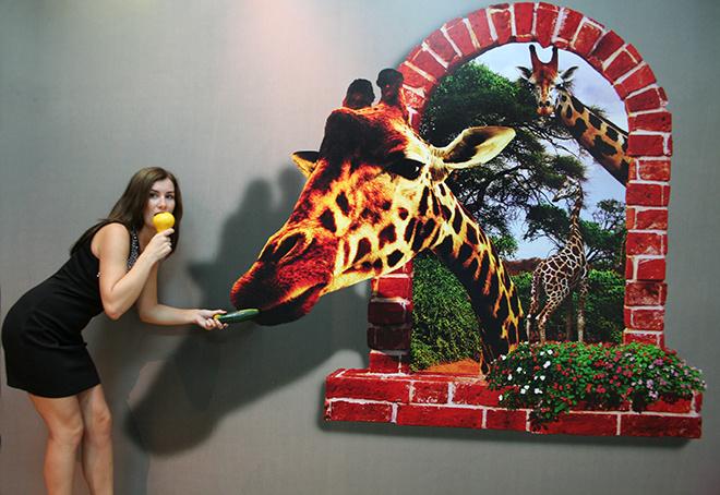 Выставка оптических иллюзий в Ростове-на-Дону: Иллюзион, афиша Ростова