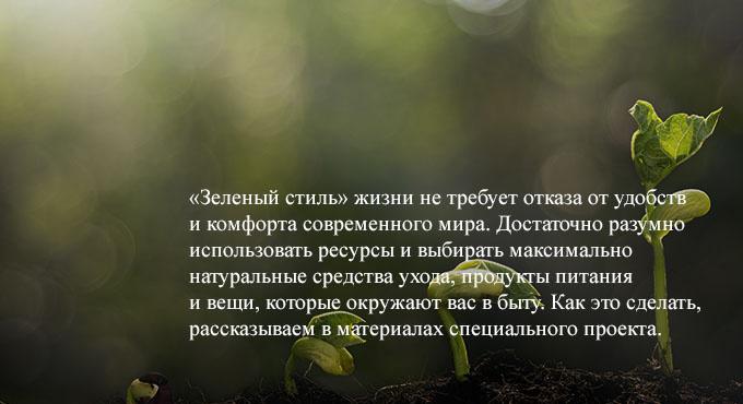 Экологичный стиль жизни: советы и принципы
