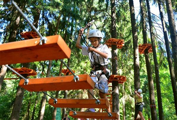 Веревочный парк Tree To Tree в Репино