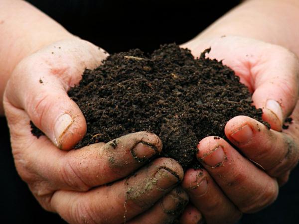 Подготовить почву