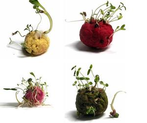 Мастер-классы от цветочного ателье «Душистый горошек»