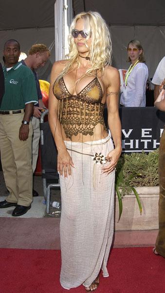 Памела Андерсон, 2002 год