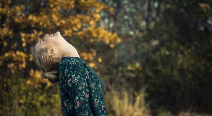 Общение с деревьями: практика для 5 органов чувств