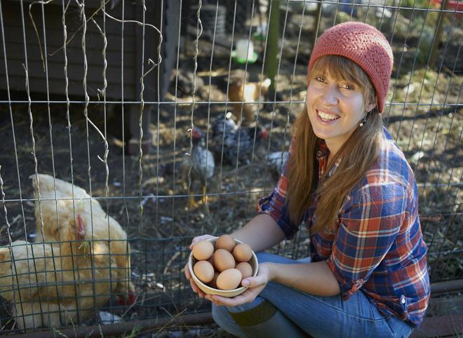 Сонник собирать куриные яйца грязные