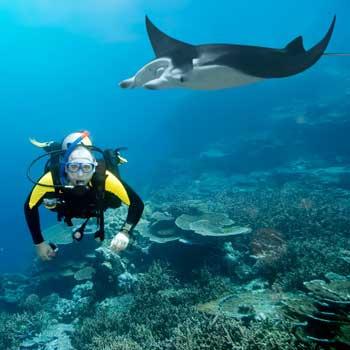 Подводный мир близ экзотических островов поражает воображение. Приятно, что есть страны, попасть в которые можно без визы.