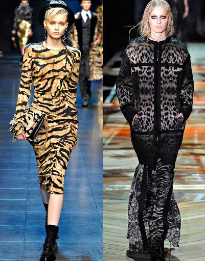 Dolce & Gabbana и Roberto Cavalli, осень-зима 2011/2012