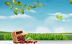 Время покупать: ТОП-5 сезонных дачных товаров