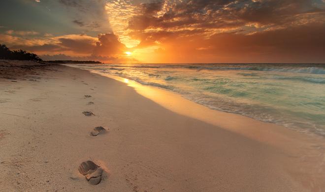 сонник пляж