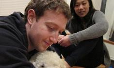 Марк Цукерберг и его возлюбленная завели щенка