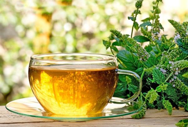 Чай с чабрецом: полезные свойства, рецепт. Видео - Woman's Day