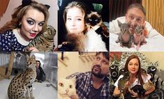 Всем – валерьянки! 10 знаменитых уральских кошатников