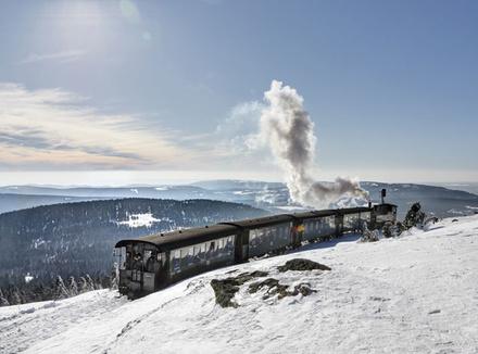 Поезд в снегах