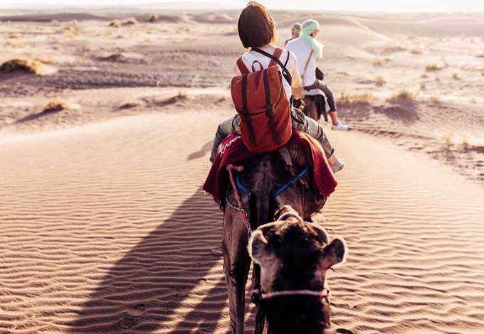 Поездка на верблюдах