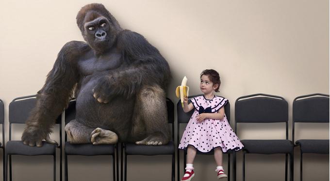 «Иерархия живых существ – иллюзия»