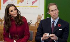 Аргентина против поездки принца Уильяма на Фолклендские острова