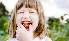 Лучшие сорта низкорослых помидоров