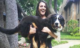 Фитнес с собакой: новый тренд покоряет сеть
