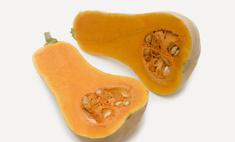 Сорта мускатной тыквы, описание культуры