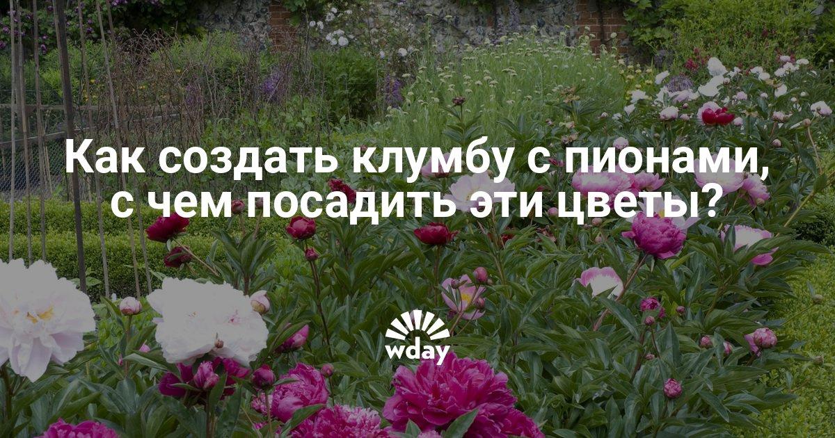 Сделать цветочницу своими руками