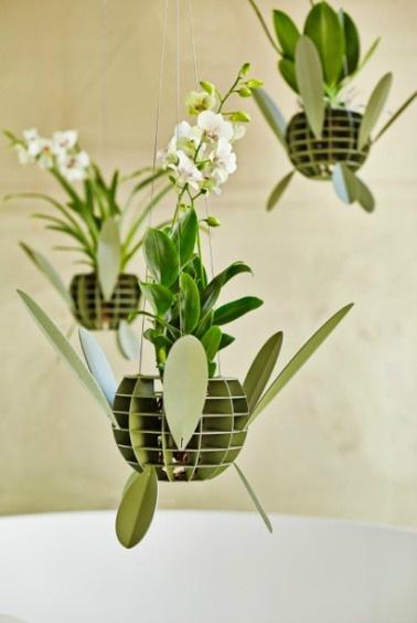гид по стилю на 2015 год орхидеи