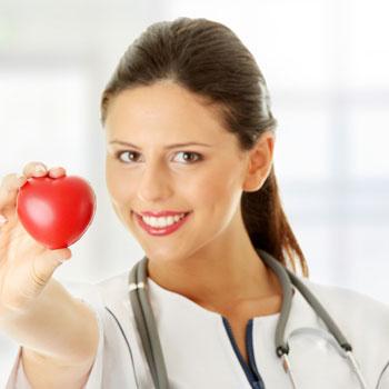 Сердце вместе с кровеносными и лимфатическими сосудами образуют сердечно-сосудистую систему.