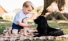 Принцу Джорджу 3 года: самые яркие выходы в свет