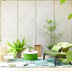 Зимний сад: как превратить свой дом в тропический лес