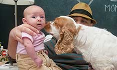 Пять способов подготовить собаку к появлению малыша