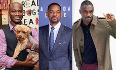 10 самых сексуальных темнокожих актеров Голливуда