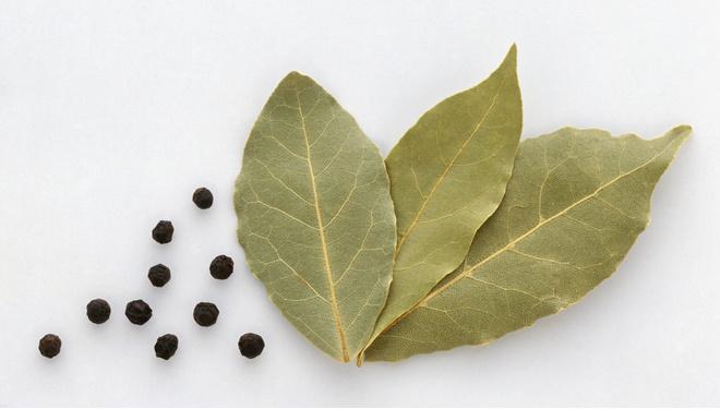 Лавровый лист имеет много лечебных свойств и несколько противопоказаний