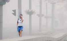 На московских чиновников подали в суд за смог
