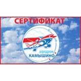Полет на самолете с аэродрома Камышино г. Омск