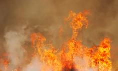 Российские самолеты будут тушить самый крупный пожар в истории Израиля