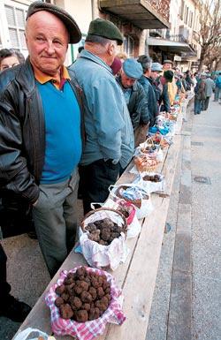 Грибы и трюфели купить в Липецке недорого и сравнить