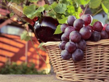 Красное вино помогает держать в тонусе мышцы