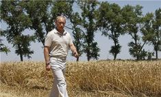 Россияне признали существование культа личности Путина