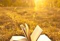 13 лучших книг для отпуска