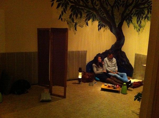 Чайное дерево Пенза
