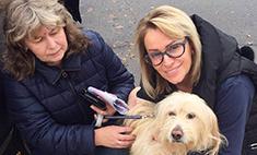 Гулькина спасла пса, которого бросили умирать на дороге