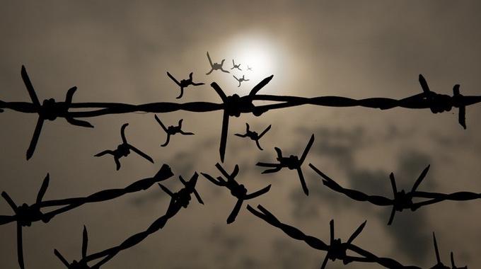 «У нас всегда есть выбор»: узница Аушвица о надежде, силе духа и любви к жизни