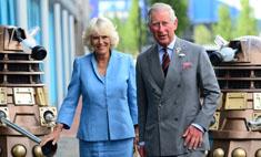 Принцу Чарльзу предложили роль в телесериале