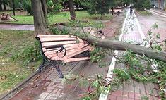 Ураган в Ростове: фото непогоды