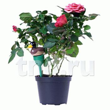 Сигнализатор полива растений «Уточка»