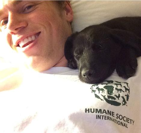 Гас Кенуорти, забравший щенков и их маму в США, стал «мимими» дня