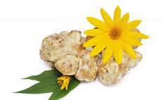 Полезный овощ на вашем столе: топинамбур или земляная груша