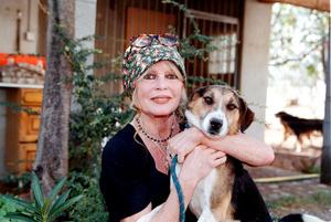 Бриджит Бардо активно защищает права животных