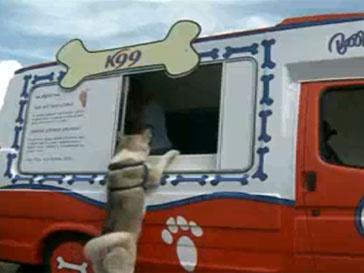 У собак теперь есть свое мороженое
